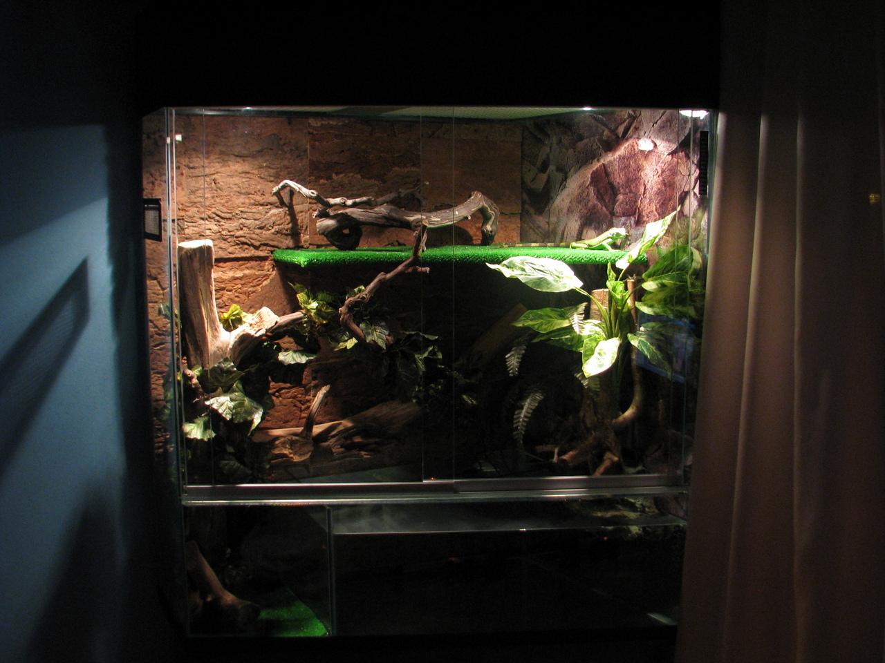 Террариум для зеленой игуаны своими руками