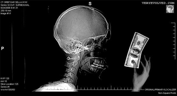 Image result for Neuroeconomics