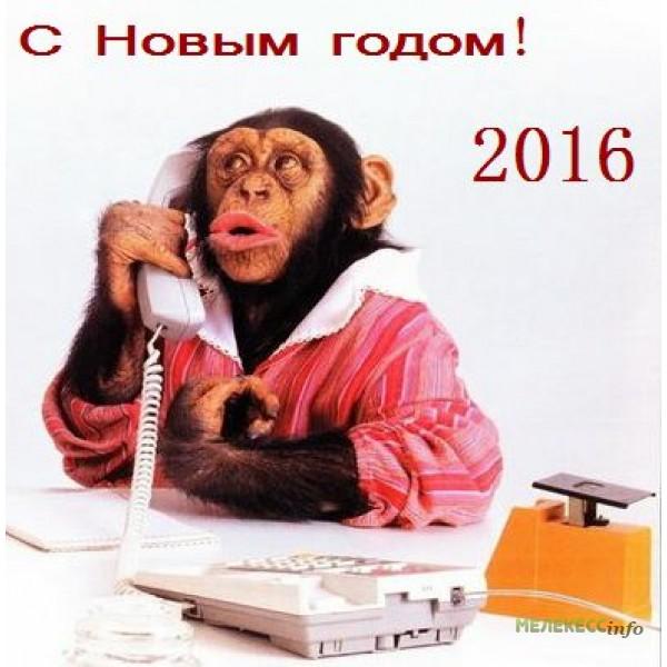 разблокировки можно с новым годом картинки с пожеланиями шуточными обезьянка следует отметить, что