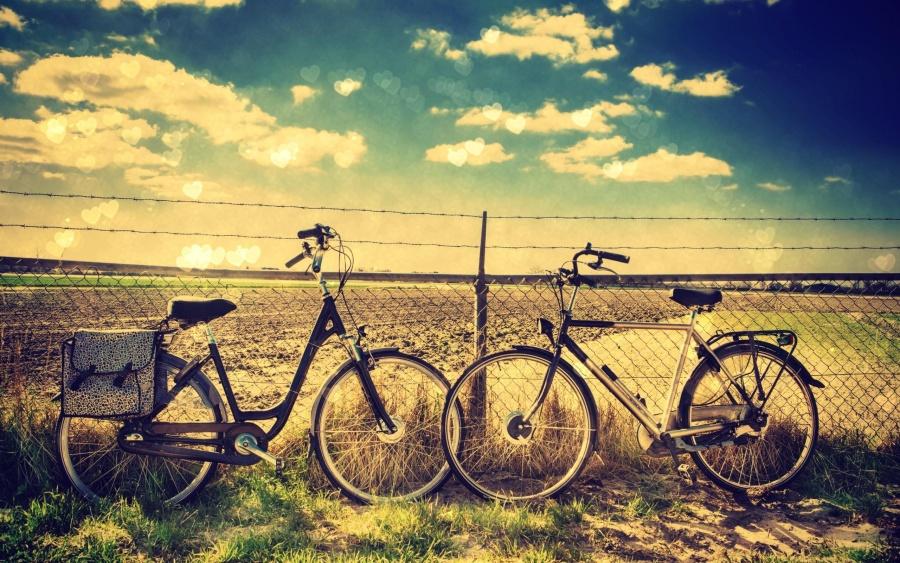 Шалавы на велосипеде тренируется